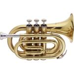 Stagg Bb Pocket Trumpet
