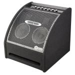 CD 200 Watt Drum Amplifier