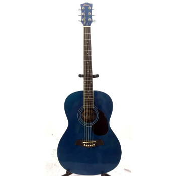 B-GRADE Tiger Acoustic Guitar for Beginners - Blue
