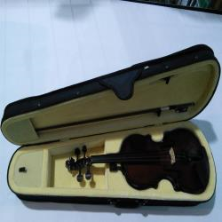 Ebay Item - Theodore Beginners Violin 3/4 Size - Imperfections